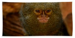Pygmy Marmoset Hand Towel by Anthony Jones