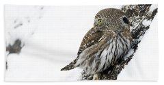 Pygmy Owl Hand Towel