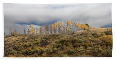 Quaking Aspen Tree Landscape, Grand Teton National Park, Wyoming Hand Towel