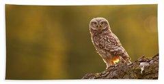 Qui, Moi? Little Owlet In Warm Light Bath Towel