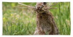 Rabbit Collector Square Hand Towel by Terry DeLuco