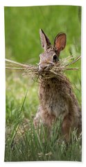 Rabbit Collector  Hand Towel by Terry DeLuco