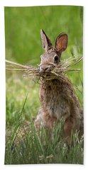 Rabbit Collector  Bath Towel by Terry DeLuco