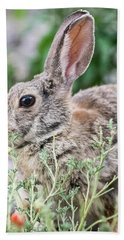 Rabbit Munching Lunch Hand Towel