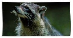 Raccoon 1 Hand Towel