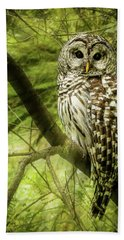 Radiating Barred Owl Hand Towel