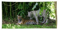 Rain Forest Tigers Hand Towel