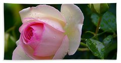 Hand Towel featuring the photograph Rain-kissed Rose by Byron Varvarigos