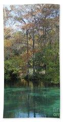 Rainbow River Vertical Hand Towel by Dodie Ulery