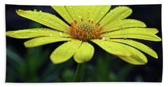 Bath Towel featuring the photograph Raindrops On Daisy by Judy Vincent