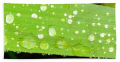 Raindrops On Leaf Hand Towel
