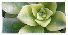 Bath Towel featuring the photograph Raindrops On The Succulent by Elvira Butler
