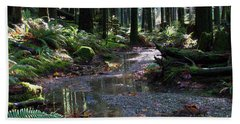 Hand Towel featuring the photograph Rainforest Trail 2 by Sharon Talson