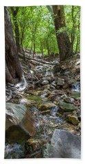 Ramsey Canyon Preserve Hand Towel