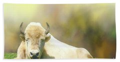 Bath Towel featuring the photograph Rare White Buffalo by Janette Boyd
