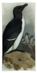 Razorbill Hand Towel by Archibald Thorburn