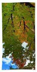 Bath Towel featuring the photograph Reaching For The Sky by Gary Hall