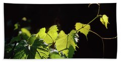 Reaching Grape Vine Hand Towel