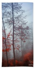 Bath Towel featuring the photograph Red And Blue by Elena Elisseeva