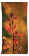 Red And Gold Hand Towel