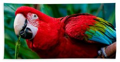 Red And Green Macaw Bath Towel
