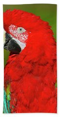Bath Towel featuring the photograph Red And Green by Tony Beck