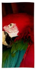 Red And Green Wing Macaw Bath Towel