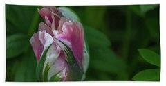Bath Towel featuring the photograph Red And White Bud 1 by Timothy Latta