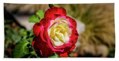 Red And Yellow Rose Hand Towel