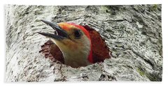 Red-bellied Woodpecker 02 Hand Towel by Al Powell Photography USA