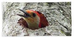 Red-bellied Woodpecker 02 Hand Towel