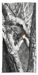 Bath Towel featuring the photograph Red-bellied Woodpecker by Benanne Stiens