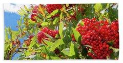 Red Berries, Blue Skies Bath Towel