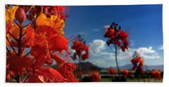 Red Bird Of Paradise Hand Towel by Chris Tarpening