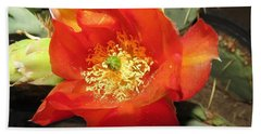 Red Bloom 1 - Prickly Pear Cactus Hand Towel