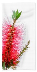 Red Bottle Brush Against An Overcast Sky Bath Towel