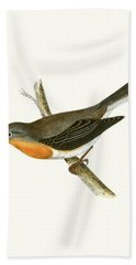 Red Breasted Flycatcher Hand Towel by English School