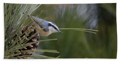 Red Breasted Nuthatch Bath Towel