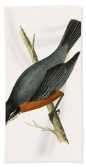 Red Breasted Thrush Bath Towel