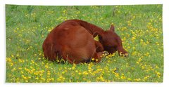 Red Calf In The Buttercup Meadow Bath Towel