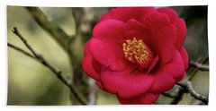 Hand Towel featuring the photograph Red Camelia 05 by Gregory Daley  PPSA