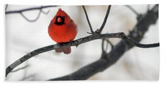 Hand Towel featuring the photograph Red Cardinal In Snow by Marie Hicks