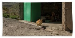 Red Cat And Green Shed Hand Towel by Patricia Hofmeester