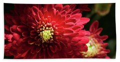 Red Chrysanthemum Hand Towel