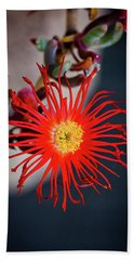 Bath Towel featuring the photograph Red Crab Flower by Bruno Spagnolo
