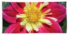 Red Dahlia Hand Towel