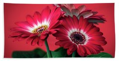 Red Daisies #5 Hand Towel
