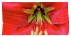 Red Daylily Hand Towel