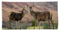 Red Deer Fawns Hand Towel