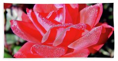 Red - Dew Covered  - Rose Hand Towel